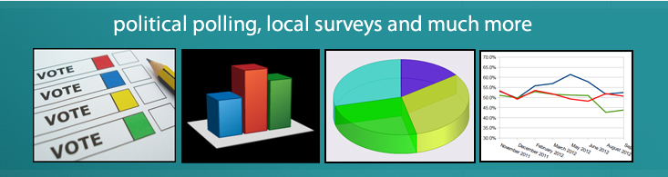 Political surveys, local polls and much more